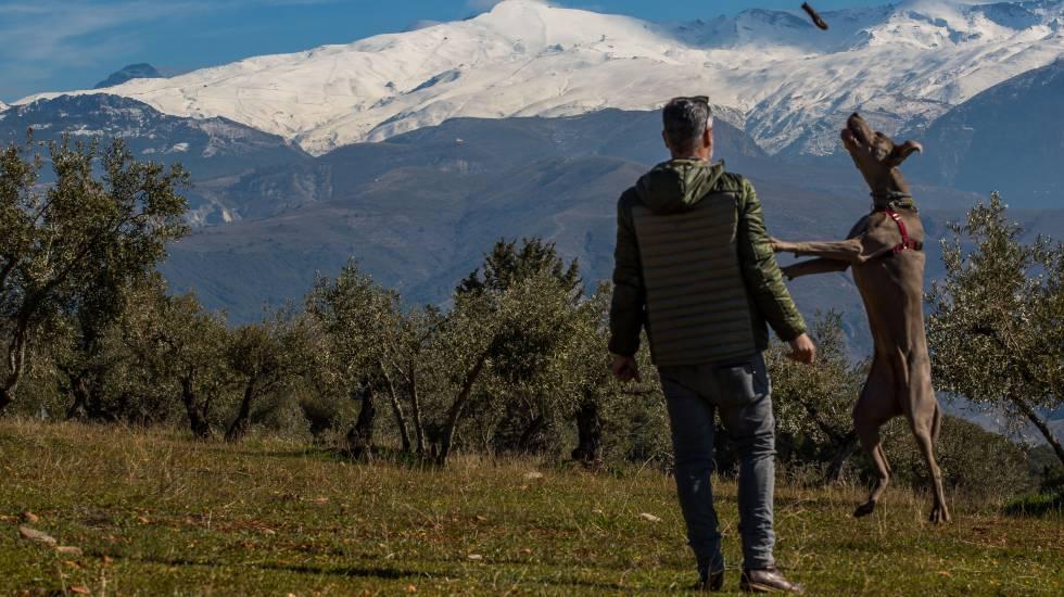 Un hombre pasea con su perro por las estribaciones de Sierra Nevada.