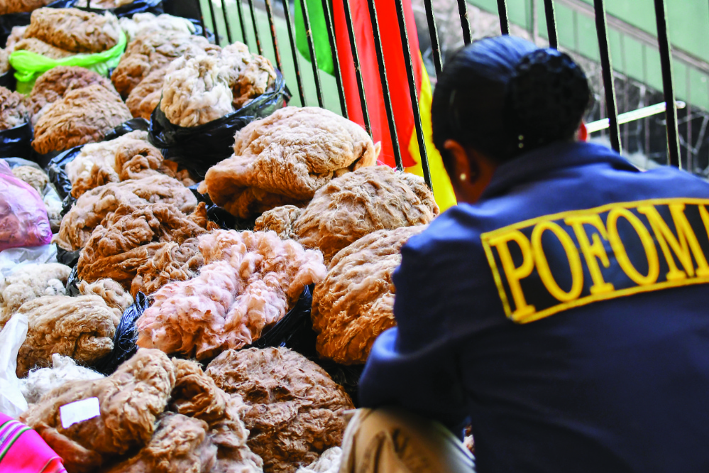 Cinco mercados negros de El Alto trafican con fibra de vicuña