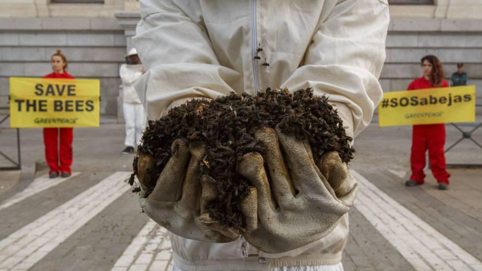 La Unión Europea prohíbe los pesticidas que dañan a las abejas