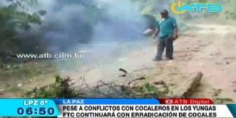 Continuarán las labores de erradicación de hoja de coca en los Yungas