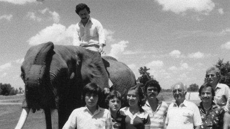 Pablo Escobar en uno de los elefantes que compró para su zoo privado