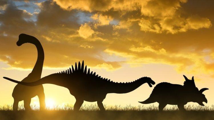 Los dinosaurios se extinguieron entre las tres cuartas partesde la vida planetaria que se perdieron.