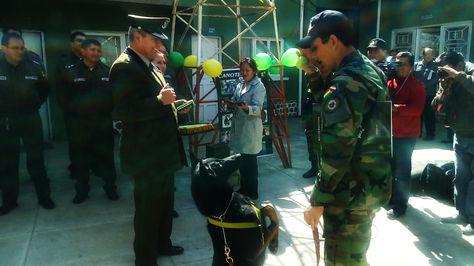 Doris, la perra detectora de drogas y divisas saluda a su instructor tras recibir la distinción.