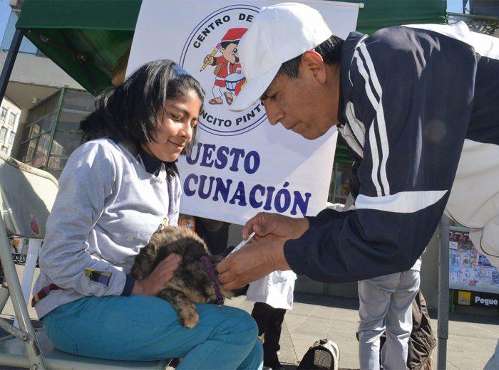 Más de 19.000 brigadas de vacunación se desplazaron por el área urbana y rural del país.