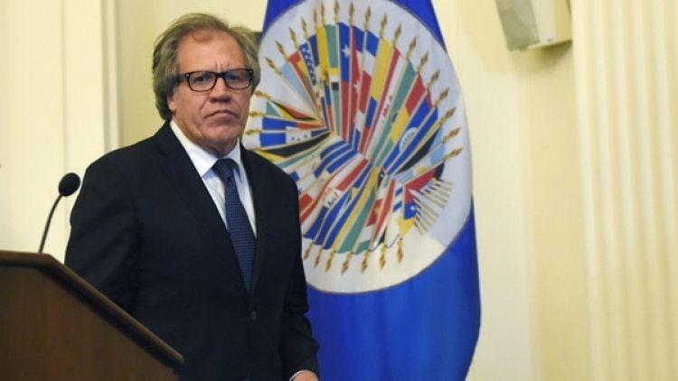 Luis Almagro, secretario general de la OEA (EFE)