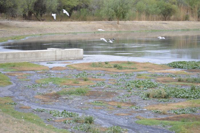 Licitación para planta de tratamiento de San Blas en Tarija se retrasa seis días