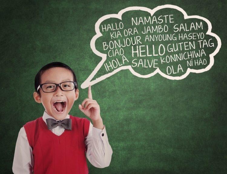 Los hiperpolíglotas hablan más de 11 idiomas, en ocasiones hasta 30 o 50, con distinto nivel de dominio. Su genética yla plasticidad de sus circuitos neuronalespodrían explicarlo.(Shutterstock)