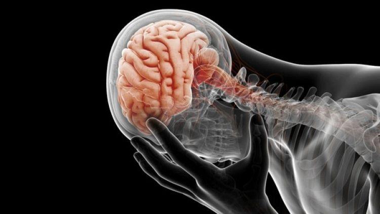Un software logró por primera vez decodificar la actividad cerebral que registró un implante para evaluar el estado de ánimo de siete pacientes.