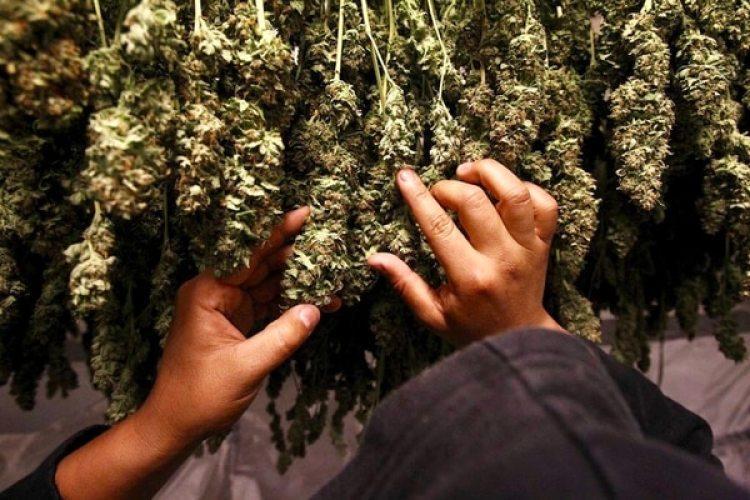 Un fiscal de Manhattan desestimó más de 3 mil casos de tenencia y consumo de marihuana