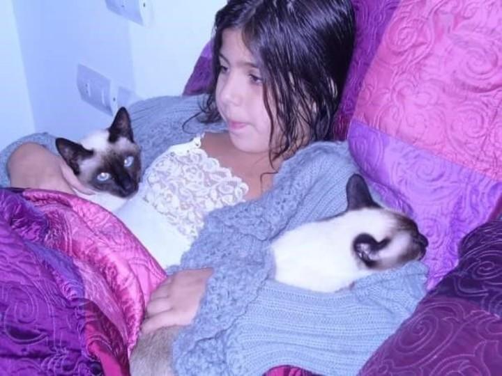 """Hogar """"gatuno"""". La hija de Florencia con Chuki (izq.) y Uma, la gata """"viejita""""."""