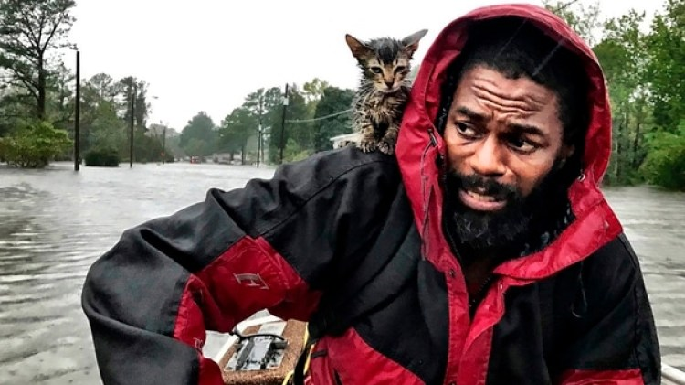 "Robert Simmons Jr. y su gato ""Sobreviviente"" (Andrew Carter/The News & Observer via AP)"