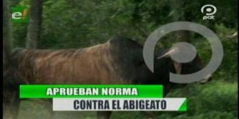 Video titulares de noticias de TV – Bolivia, noche del martes 18 de septiembre de 2018