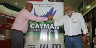 Unión Agronegocios lanzó el pasto Cayman, especial para zonas inundadizas