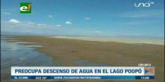 Nuevo descenso de agua en el lago Poopó pone en riesgo a los peces