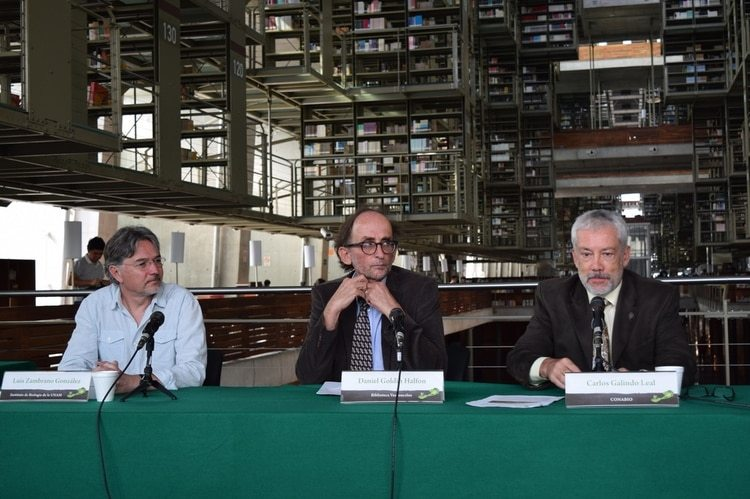 El desempeño de Goldin como director de la Vasconcelos levantó el reconocimiento de todo el ámbito de la cultura en México (Foto: Cortesía Conacyt)