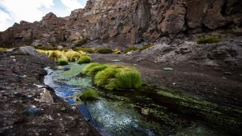 Diremar: En una disputa por el agua, lo mejor es la cooperación