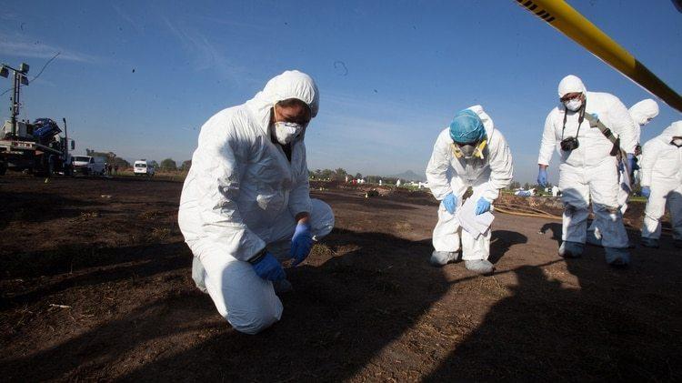 Expertos forenses registran una zona en busca de restos (Foto: EFE)