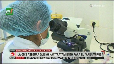 OMS/OPS asegura que el Arenavirus en Bolivia está controlado