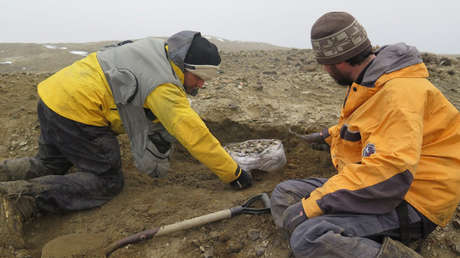 Paleontólogos argentinos en la isla de Marambio, en el extremo norte de la península Antártica