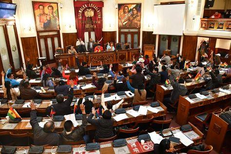 La sesión de la Cámara de Diputados. Foto: @Diputados_Bol
