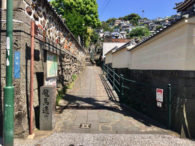 Kameyama 16