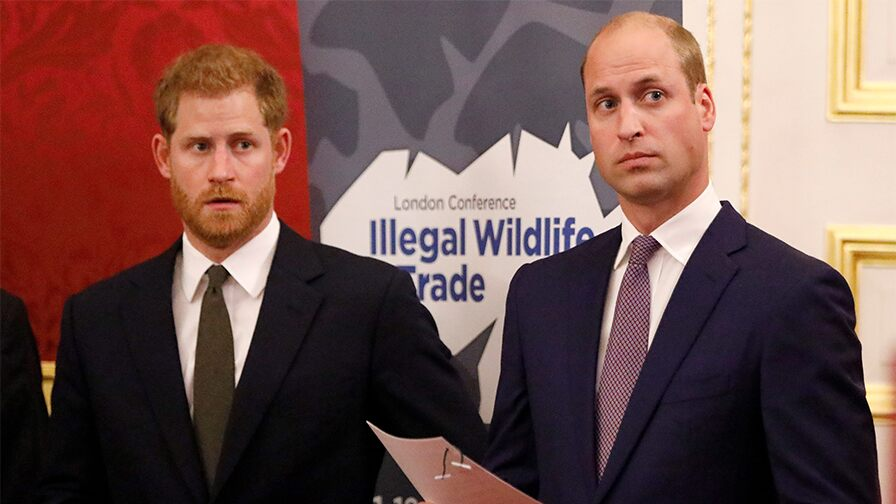 prince-william,-kate-middleton's-birthday-post-for-prince-harry-leave-royal-fans-divided