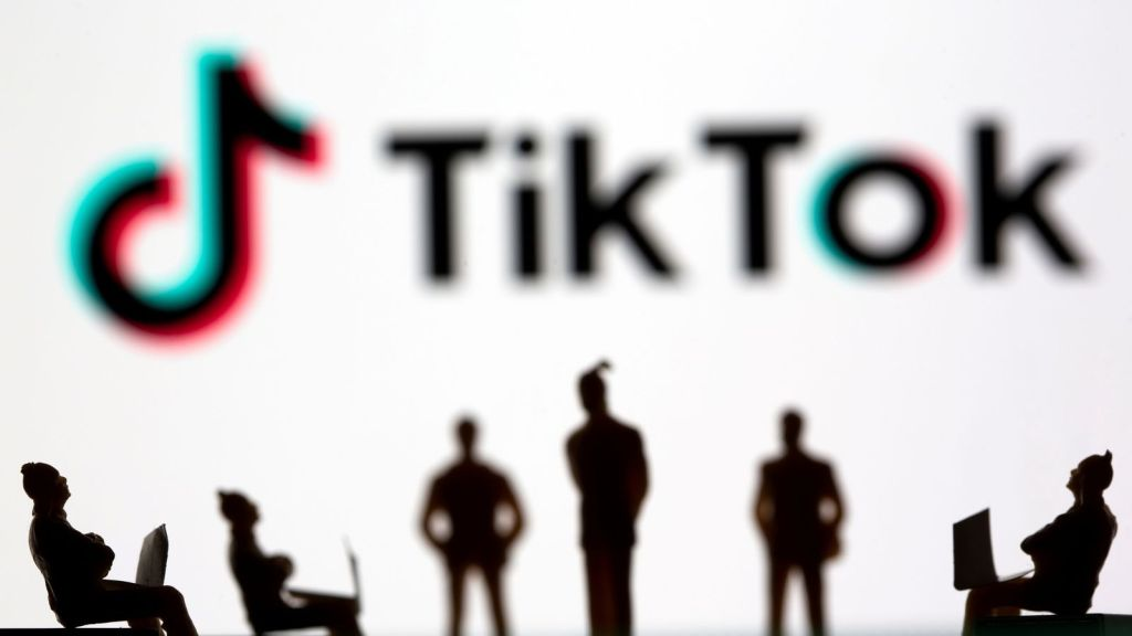TikTok rose to popularity after it launched globally in 2018 but has come under fire for its data collection practices