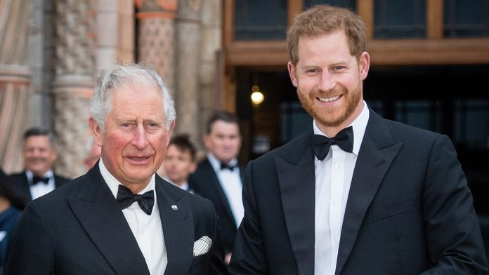 Prince Harry says he was put through 'pain and suffering' by his father Prince Charles