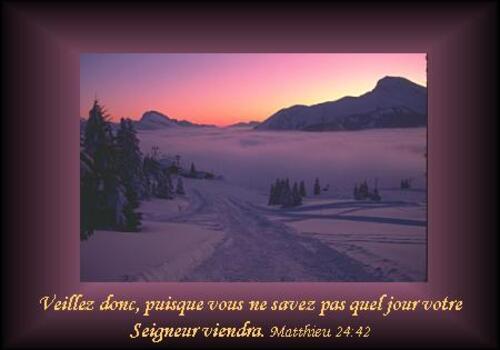Matthieu  24 :42