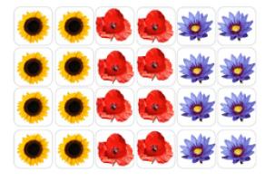 Boites à compter fleurs