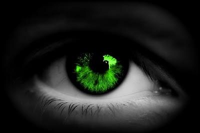 """Résultat de recherche d'images pour """"oeil vert"""""""