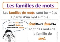 Affiche les mots de la même famille