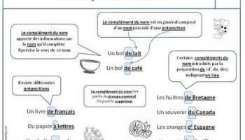 Leçons Grammaire Ce2 Loustics