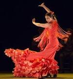 Flamenco ou FlamMes and Co .....