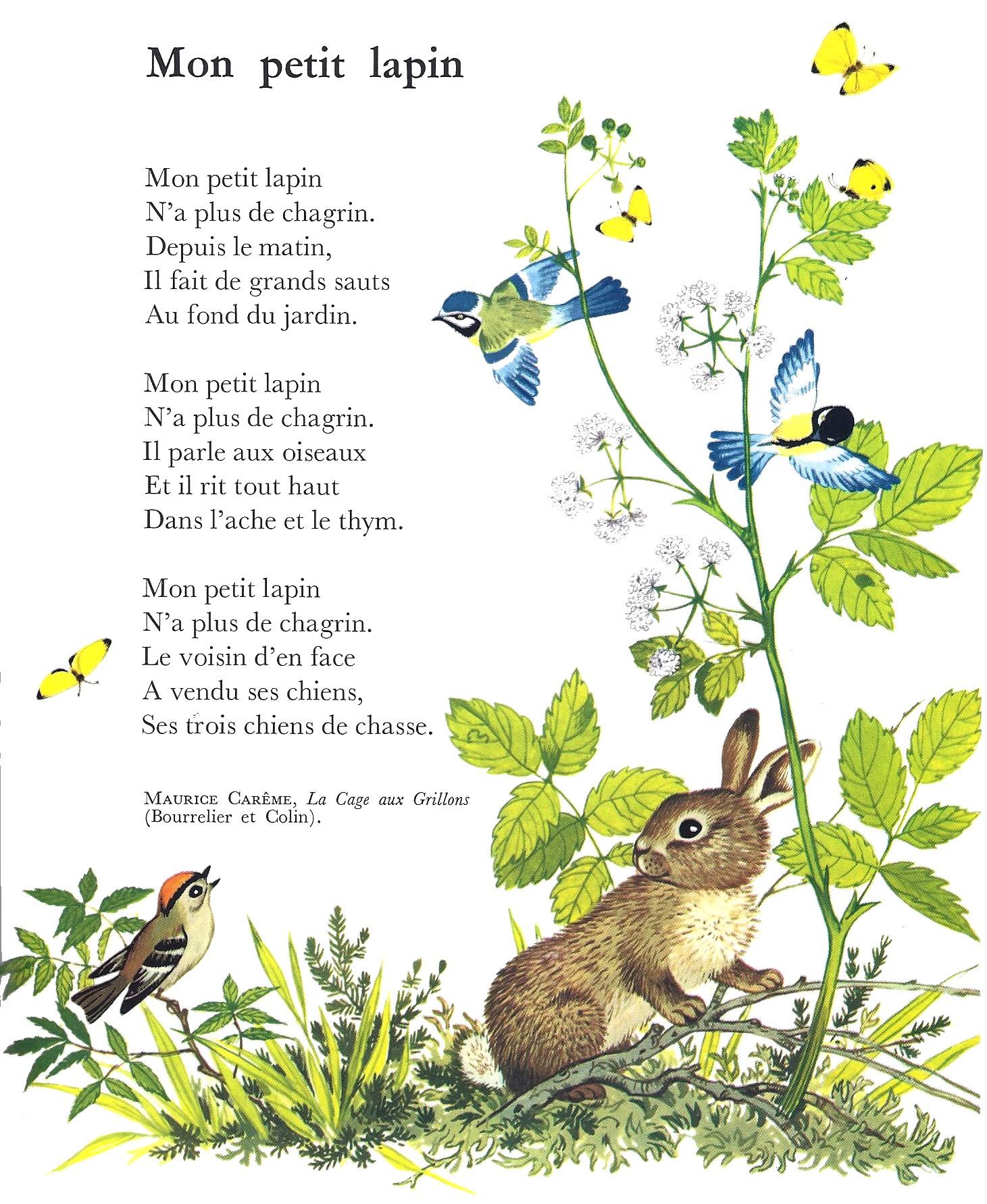 Alain de Botton - Ce Se Intampla in Iubire