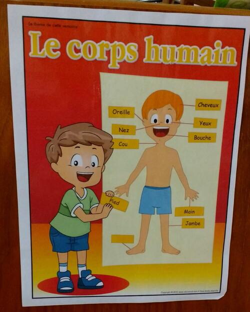 Le corps humain version Maison des Enfants