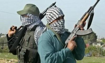 Bandits Kill Eight In Fresh Zamfara Attack