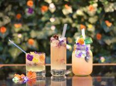 Květinové ledové čaje