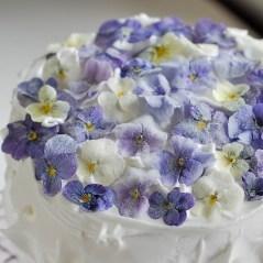 """Pro """"mražené"""" violky a macešky, potřete květy gelem z nabobtnalých lněných semínek a následně posypte jemně mletým cukrem (moučkou)"""