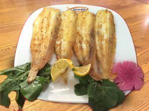 Dil-BalığıDil Balığı