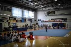 Μία μεγάλη μέρα για το Κουνγκ Φου & το Τάι Τσι στην Κορινθία
