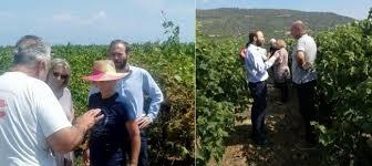 Απαντηση του ΣΥΡΙΖΑ Κορινθιας στην ερώτηση του Χ.Δημα για τις καταστροφές στις καλλιέργειες στην Κορινθία