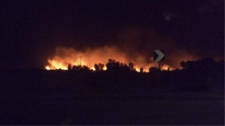 Πυρκαγιές σε Μαραθώνα, Αχαΐα και Αρκαδία: Μάχη με τους ανέμους δίνουν οι πυροσβέστες