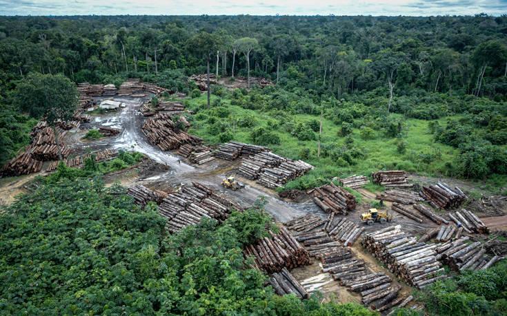 Η Γερμανία ακύρωσε χρηματοδότηση 35 εκατ. ευρώ για την προστασία του Αμαζονίου