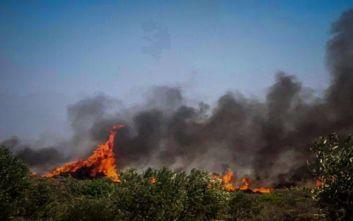 Φωτιά στην Ελαφόνησο: Εσπευσμένα στο νησί ο ΓΓ Πολιτικής Προστασίας