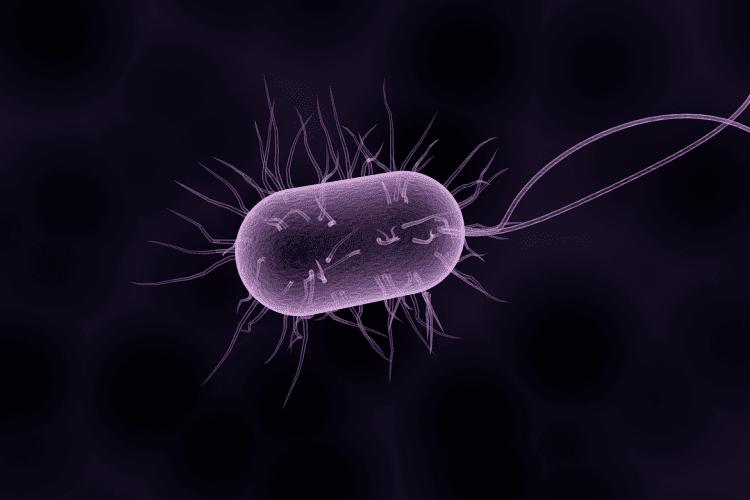 Το βακτήριο Clostridium difficile εξαπλώνεται στα νοσοκομεία