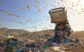 Αντώνης Πρεντάκης: Ένα ρεαλιστικό σχέδιο για τη διαχείριση των απορριμμάτων