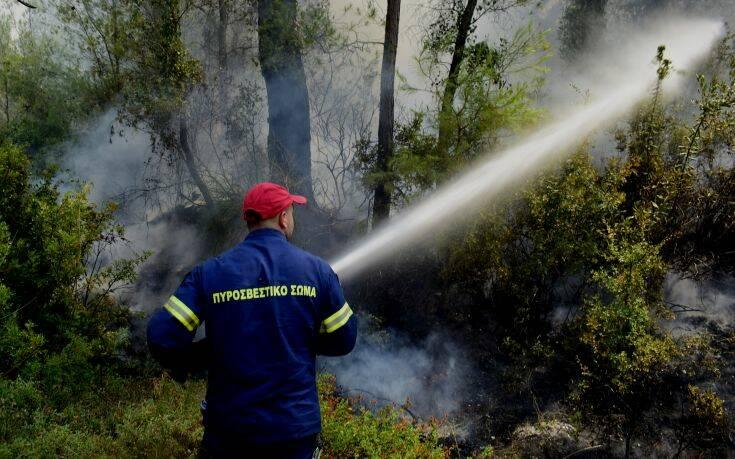 Πυροσβεστική: 62 δασικές πυρκαγιές σε όλη την Ελλάδα το τελευταίο 24ωρο