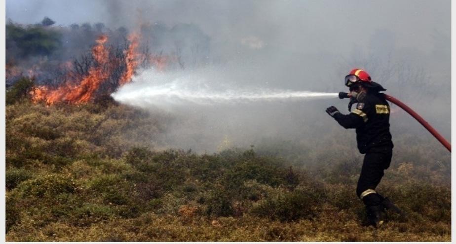 Ενισχύονται οι πυροσβεστικές δυνάμεις στις Κεχριές – Στην περιοχή ο Ν. Χαρδαλιάς και ο αρχηγός της Πυροσβεστικής