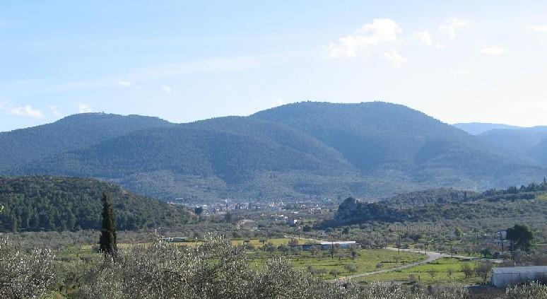 Κλιμάκιο του ΣΥΡΙΖΑ στην περιοχή των καμένων του Δήμου Κορινθίων